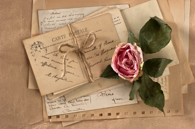 Love Letters Rose
