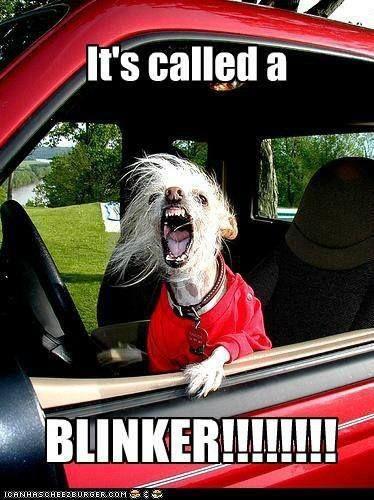 Road Rage Blinker